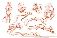 This is not a human, but the sleek posture of the squirrel reminds me of a cat. Could prove useful.