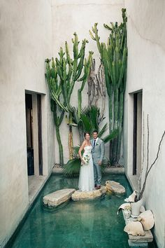 Cactuses and reflecting pools make Philip Dixon house in Venice CA a one of a kind setting for a wedding. Photo by Gary Ashley of The Wedding Artist Collective Dixon Homes, Venice California, Garden Design, House Design, Local Attractions, Death Valley, Venice Beach, Love And Marriage, Interior And Exterior