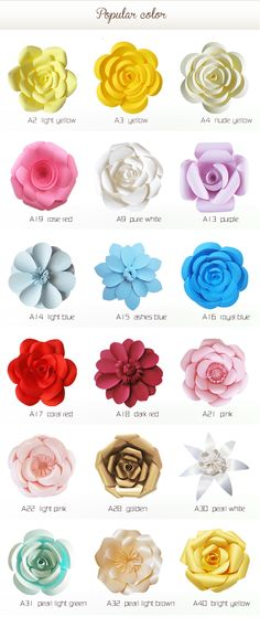 Different paper flower shapes