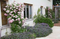 Norfolk - private garden - Adam Frost