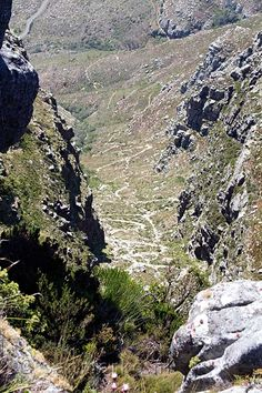 The Plattekloof Table Mountain, South Africa,  seen from the top towards to end, our path down