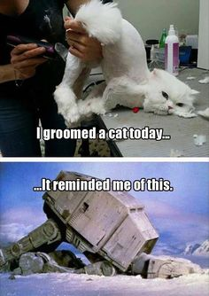 Funny Pictures Of The Day – 42 Pics