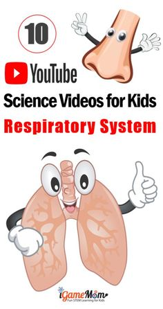 Science Videos on YouTube teaching kids human body respiratory system: lung, nose, larynx, trachea, bronchi, ... and how blood carries oxygen, how to keep lung healthy. There are videos for kids of different age groups: preschool, kindergarten, elementary school, middle and high school. #ScienceForKids #STEMforKids #iGameMomSTEM