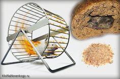 Хлебные крошки в Вордпресс без плагинов