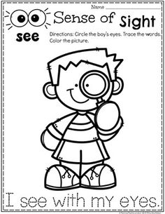 Sense of Sight Coloring Page for Preschool Do you teach a 5 Senses theme? Kids will get to learn about and sort the different senses as well as try tasting, listening, feeling and smelling. Five Senses Preschool, 5 Senses Activities, My Five Senses, Preschool Lessons, Preschool Classroom, Preschool Worksheets, Learning Activities, Preschool Activities, Kids Learning