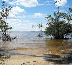 Conheça cinco destinos próximos a Belém do Pará