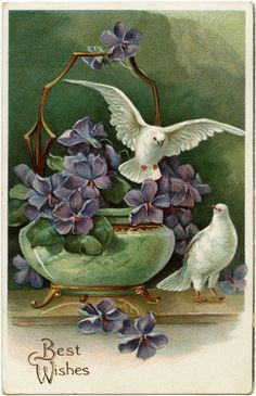 Purple Flowers and Doves ~ Free Vintage Postcard Image | Old ...