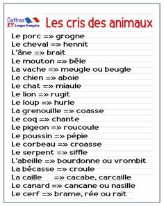 The diplomas in the French education system French Verbs, French Grammar, French Phrases, French Language Lessons, French Language Learning, French Lessons, French Expressions, Teaching French, Teaching