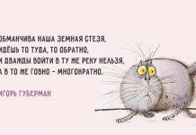 Хлёсткие «Гарики» Игоря Губермана Russian Humor, Truth Of Life, Sarcastic Quotes, Funny Quotes About Life, Man Humor, Great Pictures, Wisdom Quotes, Wise Words, Positive Quotes