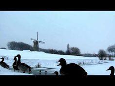 In de hongerwinter in eer herstelling. Korenmolen De Eersteling [video +...