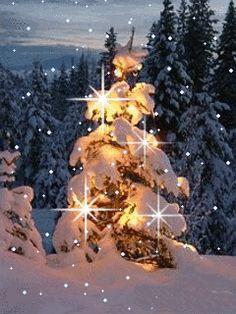 Glowing snowy tree