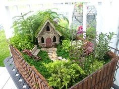 Now this seems like a fairy hideaway you might see in Florida from my perspective Yet, most of the is part of Miniature garden - Mini Fairy Garden, Fairy Garden Houses, Gnome Garden, Little Gardens, Small Gardens, Fairy Village, Garden Terrarium, Fairy Doors, Miniature Fairy Gardens