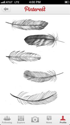 The bottom feather is lovely
