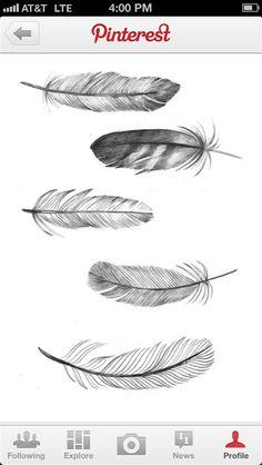 "The bottom feather is lovely. Maybe horizontally under ""Kelsey Jorissen Photography"""