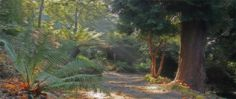 Because it may not be Jurassic park but Trebah Garden near Mawnan Smith is pretty close!