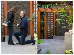 Man proposing in Spring Prelude Garden Wedding Season, Our Wedding, Proposal, Gardens, Seasons, Weddings, Spring, Mariage, Garden