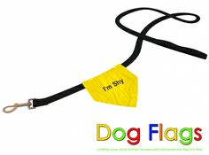 Assorted Flags for Dog Leashes to let others know of your dog's behavior.  On sale for $4.99 w/ free shipping @Coupaw