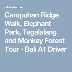 Campuhan Ridge Walk, Elephant Park, Tegalalang and Monkey Forest Tour - Bali A1 Driver