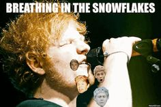 I thought of this during this song. (: hahaha cute..Ed Sheeran and Niall Horan..(: two of a couple of my favorite things..(: