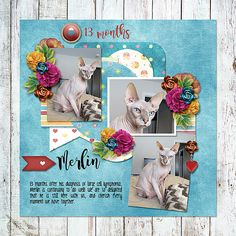 Created by Caylynn with Bright Side of Life Mega Bundle by Dagi's Temp-tations and Little Feet Digital Designs