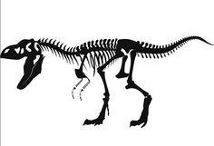 Amazon.com - Large Animal Skeleton T Rex Dinosaurs Wall Decal Stickers Decoration Decorative Living Room Mural Vinyl Black Color -