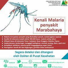Malaria #sehat #kesehatan #sakit #penyakit #dokter #rsmeilia #cibubur #depok #cileungsi #bekasi #bogor #jakarta Ecards, Memes, E Cards, Meme, Jokes