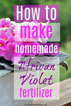 Houseplants That Filter the Air We Breathe Easy Homemade African Violet Fertilizer You Can Make From Common Household Items That You Already Have On Hand. One Of My Favorite Gardening Hacks For Caring For Houseplants. House Plant Care, House Plants, Household Plants, Household Items, Gardening For Beginners, Gardening Hacks, Types Of Houseplants, Violet Plant, Fertilizer For Plants