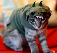 50 Dinosadorable Animals Dressed Up As Dinos