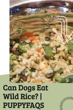 Visit here to check out can dogs eat wild rice on PuppyFAQS Blog! If you are looking to find out if it's safe to give your puppy wild rice dinner, then this is the blog post for you! For the definitive guide on Can Dogs Eat Wild Rice, click to be directed to the PuppyFAQS blog. Can Dogs Eat, Wild Rice, Dog Eating, Different Recipes, Diet, Chicken, Canning, Health, Blog