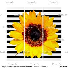 Only a Sunflower Blossom & witdth white Stripes Triptych