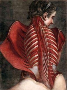 Esthétique de la décomposition du corps La Danse Macabre, Spectacle, Painting, Bodies, Google, Artists, Painting Art, Paintings, Paint