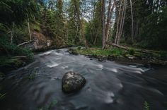 Post with 8796 views. Accidentally found this stream while walking in the woods today, didn't know we had nature like this were I live. Taken outside Stockholm, Sweden. 4k Wallpaper For Mobile, Walk In The Woods, Stockholm Sweden, Cool Photos, Amazing Photos, Amazing Places, Nature Wallpaper, Landscape Photographers, Mother Nature