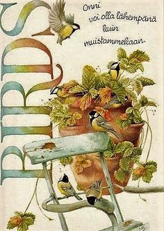 Flowers Vintage Illustration Marjolein Bastin 42 New Ideas Marjolein Bastin, Photo Vintage, Nature Artists, Dutch Artists, Jolie Photo, Art Sketchbook, Bird Art, Beautiful Birds, Decoupage