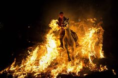 """A man rides a horse through a bonfire as part of a ritual in honor of Saint Anthony, the patron saint of animals, in San Bartolome de Pinares, Spain on Jan. 16. On the eve of Saint Anthony's Day, hundreds ride their horses through the narrow cobblestone streets of the small village during the """"Luminarias,"""" a tradition that dates back 500 years and is meant to purify the animals with the smoke of the bonfires and protect them for the year to come."""