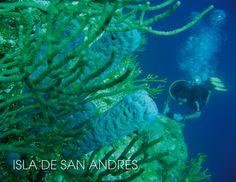 Hotel on Vacation - Cuando viajes a la isla de San Andrés es casi obligatorio que visites dos lugares, los cual son ideales para aquellos que les gustan la aventura, la historia y la ecología