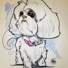 OMG Filet needs her own caricature! Animal Drawings, Drawing Animals, Baby Animals, Cute Animals, Westminster Dog Show, Maltese Dogs, Dog Art, Caricature, Yorkie
