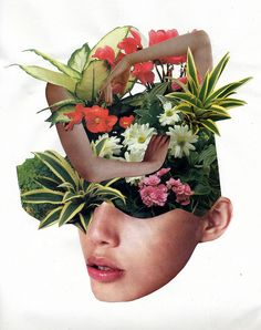 paper collage by Molly Barron