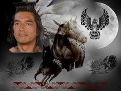 Doing some Native American-Horse stuff at the mo. Had to use Graham Greene. Dances With . Native American Actress, Native American Horses, Native American History, American Actors, Cherokee Tribe, Dances With Wolves, Graham Greene, Trail Of Tears, Painted Pony