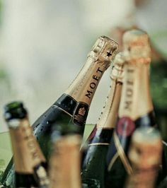 Good champagne is always a great idea. Moet Chandon, Bon Champagne, Champagne Party, Champagne Bottles, Gin, A Little Party, In Vino Veritas, Nouvel An, Winter Trends