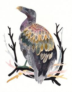 It takes a great artist to make a Vulture into a beautiful  work of art   .  Vulture with Branches  Large Archival Print by unitedthread, $40.00