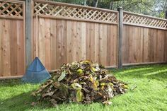 How to Make and Use a Leaf Mold for Organic Gardening