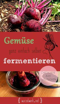 Gemüse ganz einfach selber fermentieren: Die eigene Ernte zum Haltbarmachen milchsauer einlegen. Die einfachste und leckerste Art, sich als Selbstversorger einen Wintervorrat anzulegen. Und Sauerkraut und Co. sind zudem super gesund!