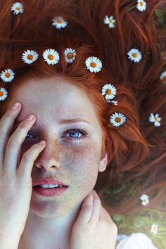 Photograph Daisies by Maja Top?agi? on 500px