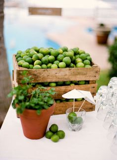 style me pretty - real wedding - puerto vallarta wedding - reception decor - bar - mojito bar