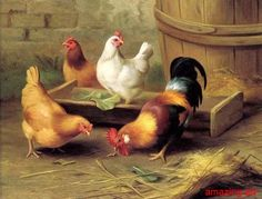 roosters and chickens painting books | Animals Oil Painting on Canvas Chicken and Roosters | eBay