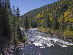 The Taylor River below Taylor Park Reservoir is world famous for producing gigantic trophy trout.