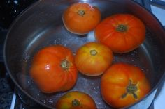 Tomatoes on the Vine: Learning to Preserve: Freezing Fresh Tomatoes