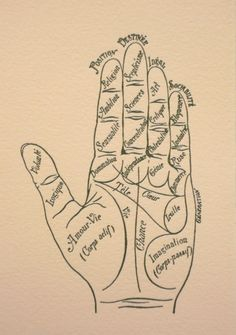 Palmistry truth or hoax pinterest palm palm hand and shorts palm reader cards so elegant m4hsunfo