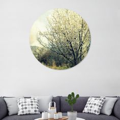 "«Tree Blooming», Exclusive Edition Disk by ARTbyJWP via Curioos #homedecor #decoration #walldeco #wallart #posters #tree #shop - This exclusive edition Disk, designed by ARTbyJWP, comes with a numbered and signed certificate of authenticity. Printed on a .045"" thick aluminum sheet, this print is crisp, high gloss, lightweight, and water resistant. It comes with a proprietary 1/2"" aluminum shadow mount allowing for easy installation."