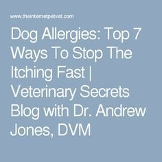 Dog Allergies: Top 7 Ways To Stop The Itching Fast   Veterinary Secrets Blog with Dr. Andrew Jones, DVM